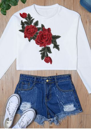 Applique O-Neck Long Sleeve Crop Top