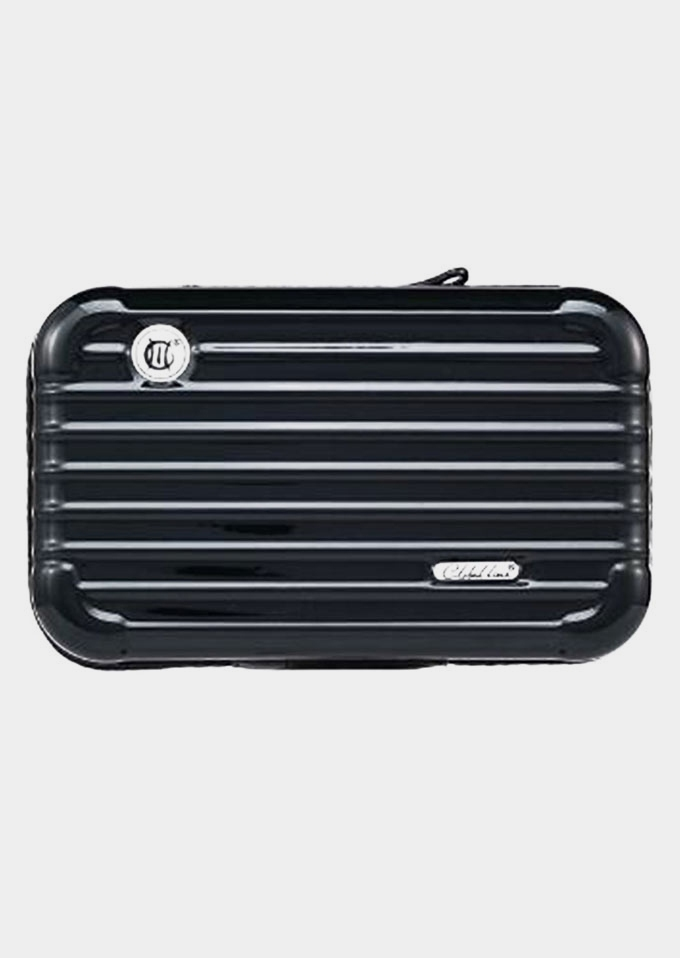 Mini Toiletry Cosmetic Bag Travel Luggage Case